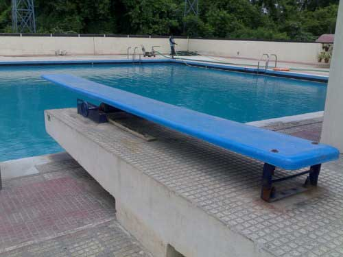 Swimming Pool Designing Services : Diving board dg designs